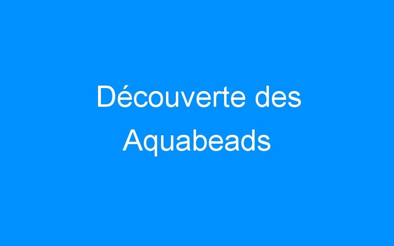 Découverte des Aquabeads
