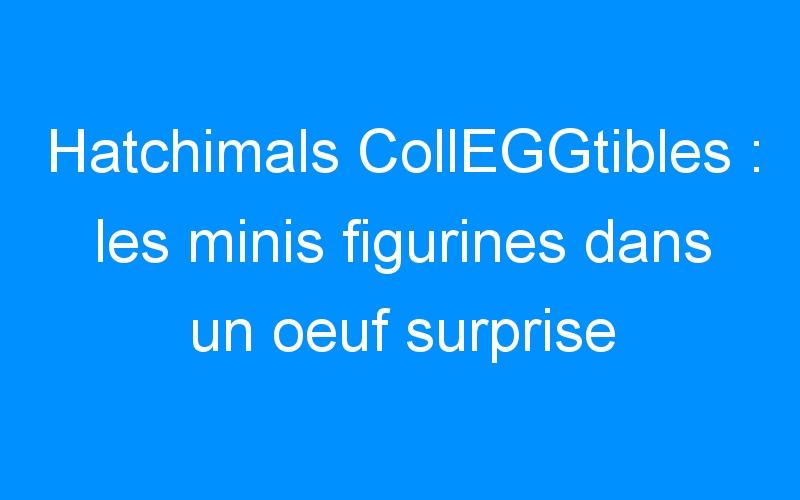 Hatchimals CollEGGtibles : les minis figurines dans un oeuf surprise à éclore !
