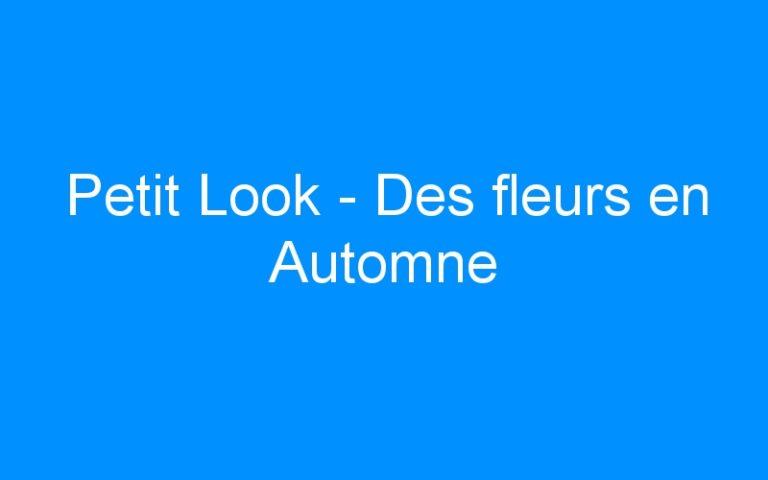 Petit Look – Des fleurs en Automne